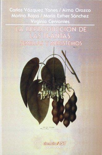 La Reproduccion De Las Plantas: semillas y meristemos