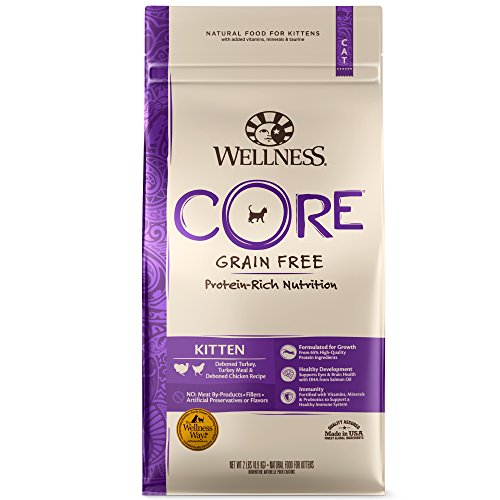 Wellness CORE Natural Grain Free Dry Cat Food review