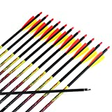 Misayar 12Pcs/lot 30 Inch Carbon Arrows...