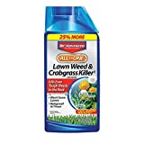 Bayer Advanced All-in-One Lawn Weed & Crabgrass Killer 32 oz Concentrate for Dandelions, Crabgrass & Clover