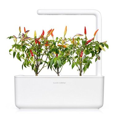 Click-and-Grow-Smart-Garden-Red-Hot-Chili-Pepper-Plant-Pods-3-Pack