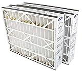 Trion Air Bear 259112-102 (2-Pack) - 20' x 25' x 5' Pleated Air Filter, MERV 11