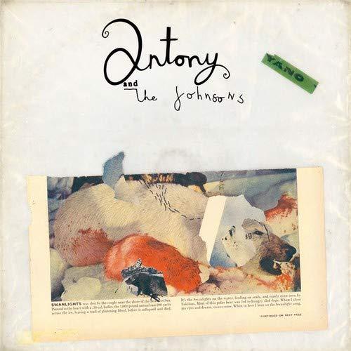 Swanlights : Antony, The Johnsons: Amazon.fr: Musique