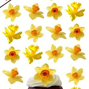 24 X DAFFODIL FLOWERS EDIBLE WAFER /RICE PAPER CUPCAKE CAKE TOPPERS BIRTHDAY PARTY EASTER DECORATION 51dYDimWRfL