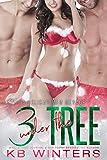Three Under The Tree: A Holiday MFM Romance