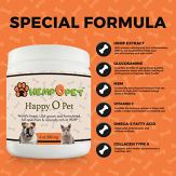 Hemp-Extract-Pet-Supplement-for-Hip-Joint-Arthritis-PainAnxiety-Relief-6-Oz-for-Both-Cats-Dogs-Advanced-Formula-wGlucosamine-MSM-VIT-C-Omega-3-Collagen-More-Beef-Flavored