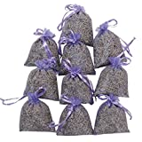RakrisaSupplies Purple Bags Pack of 15 | Natural Deodorizer and Highest Fragrance Lavender Scent Sachets | LS-001