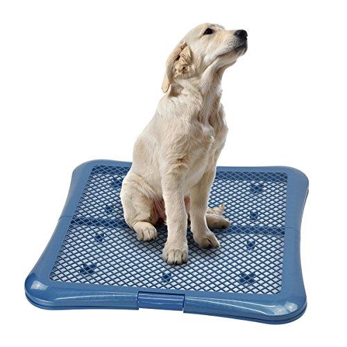 Petphabet Training Pad Holder Floor Protection Dog Pad Holder Mesh Training Tray (L)