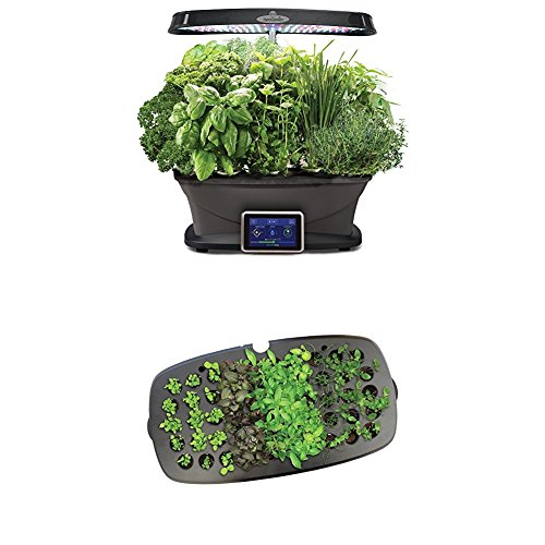 AeroGarden Bounty with Gourmet Herb Seed Pod Kit with Seed Starting System