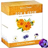 Edible Flower Seed Kit - Grow 4 Culinary Flowers from Seeds. Decoration for Cakes, Cupcakes, Soups & Salads. A Complete Starter Set W/Organic Planting Pots, Soil, Plant Labels & Growing Instructions