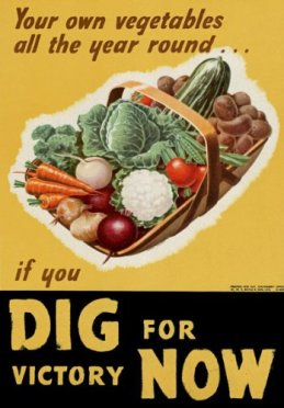 Image result for dig for victory