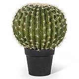 Abbott Collection 27-YUMA/813 Large Golden Barrel Cactus