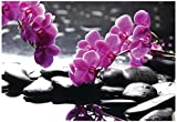 Branch Purple Orchid Flower With Therapy Stones Poster 19 x 13in