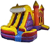 Commercial Grade 29 Foot Red & Purple Marble Helix Wet/Dry Combo Bounce House Inflatable