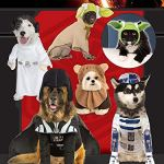Rubies-Star-Wars-Classic-Yoda-Pet-Costume
