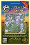 Everwilde Farms - 2000 Harebell Native Wildflower Seeds - Gold Vault Jumbo Seed Packet
