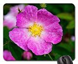 Mouse Pad - Rose Rosa Gallica Historic Rose Flowers Pink White