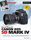 David Busch's Canon 5d Mark IV Guide to Digital Slr Photography