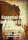 Essential Oils in Animal Care: A Naturopathic Approach