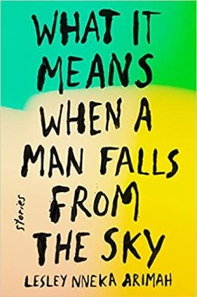 What It Means When A Man Falls From The Sky - Lesley Nneka Arimah - Homeland Reviews