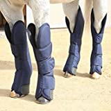 Product review for Professional S Choice Shipping Boots Blue