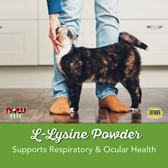 NOW-Pet-Health-L-Lysine-Powder-for-Cats-8-Ounce