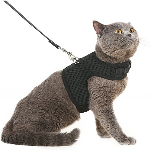Escape Proof Cat Harness with Leash - Adjustable Soft Mesh - Best for Walking 1