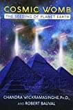 Cosmic Womb: The Seeding of Planet Earth
