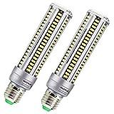 2-pack (20 Watts) LED Corn Light Bulb, AC110-130V E26/E27 1980 Lm Daylight 5000K White, for Street Lamp Post Lighting Garage Factory Warehouse High Bay Barn Porch Backyard Garden Super Bright