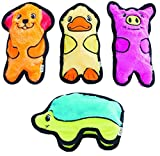 Outward Hound (4 pc. Multi-Pack) Invincibles Plush Stuffing-Less Dog Toys with Squeaker