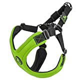 Gooby - Escape Free Sport Harness, Small Dog Step-In Neoprene Harness for Dogs that Like to Escape Their Harness, Lime, Large