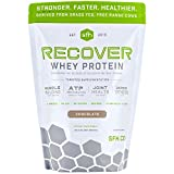 Recover Whey Protein Powder (Chocolate) by SFH | Great Tasting 100% Grass Fed Whey for Post Workout | All Natural | No Soy, No Gluten, No RBST, No Artificial Flavors (Bag)