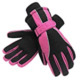 Terra Hiker Waterproof Microfiber Winter Ski Gloves 3M Thinsulate Insulation for Women Rose M