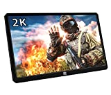 13.3 Inch Portable Gaming Monitor, 2K Resolution IPS LCD Display,HDR,USB C and Hdmi Video Input,Ultralight and Slim, Built-in Speakers, Compatible with PS4, PS3, Xbox ONE S,Xbox ONE,Nintend Switch