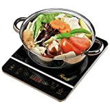 Rosewill 1800 Watt Induction Cooker Cooktop , Included 10' 3.5 Qt 18-8 Stainless Steel Pot, Gold, RHAI-16001