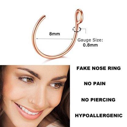 Nose Ring Hoop