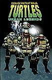 Teenage Mutant Ninja Turtles: Urban Legends, Vol. 1 (TMNT Urban Legends)