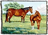 Pure Country Weavers | My Pride Mare and Foal Horses Woven Tapestry Throw Blanket with Fringe Cotton USA 72x54