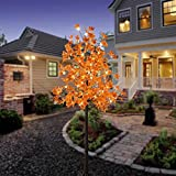 LIGHTSHARE LED Lighted Maple Tree - Dotted with 120 Warm White LED Lights, 5.5 ft, Orange