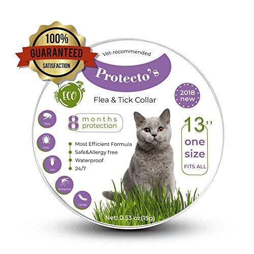 Protecto's cat flea collar