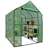 Mini Walk-in Greenhouse Indoor Outdoor -2 Tier 8 Shelves- Portable Plant Gardening Greenhouse (57'L x 57'W x 77'H), Grow Seeds & Seedlings, Herbs Flowers or Tend Potted Plants