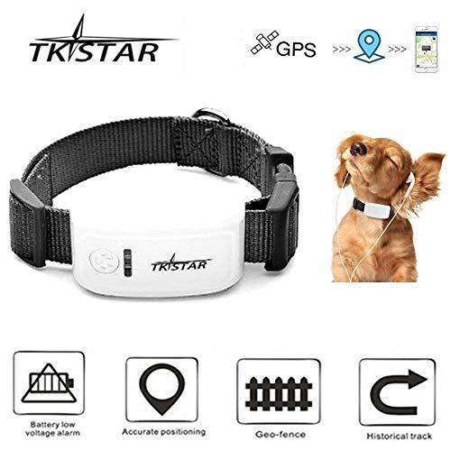 TKSTAR Mini GPS Tracker for Pet Dog/Cat GPS Collar Global Real-time Locator Remote Voice Monitor Free Online Tracking Platform TK909