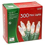 Noma/Inliten 48150-88 Holiday Wonderland Clear Green Wire Christmas Mini Light Set, 300 Count