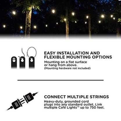 Enbrighten-Classic-LED-Cafe-String-Lights-Black-48-Foot-Length-24-Impact-Resistant-Lifetime-Bulbs-Premium-Shatterproof-Weatherproof-IndoorOutdoor-Commercial-Grade-UL-Listed-31664