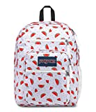 JanSport Big Student Backpack - Watermelon Rain - Oversized