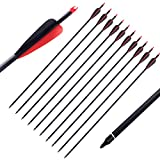 PG1ARCHERY Archery Carbon Arrows, 12 Pack 30 inch Practice Hunting Targeting Arrow with Removable Screw-in Tips for Compound & Recurve Bow