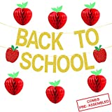 Back To School Banner Gold Glitter - Back to School Party Decorations Supplies - First Day of School Banner | Honeycomb Tissue Paper Apple Hanging Decorations - School Classroom Office Hanging Decor Sign - Teacher Banner