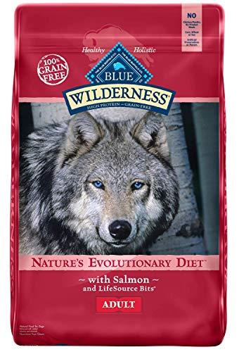Blue Buffalo Wilderness - Salmon