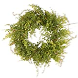 National Tree 22 Inch Berry Wreath with Boxwood Leaves and Green Berries (GAHB30-22WG)