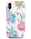 iPhone X/XS Case Double-Layered Full Coverage Protection Cactus Patterned Floral Watercolor